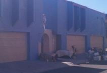 big13 exterior painting apartments phoenix tempe mesa